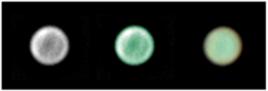 Urano em verde